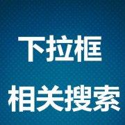 郑州网站排名优化
