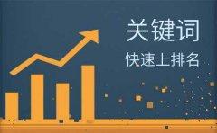 东莞网站快速排名公司