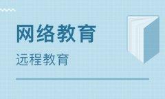 海南SEO培训之小白要如何选择网站实战培训机构?