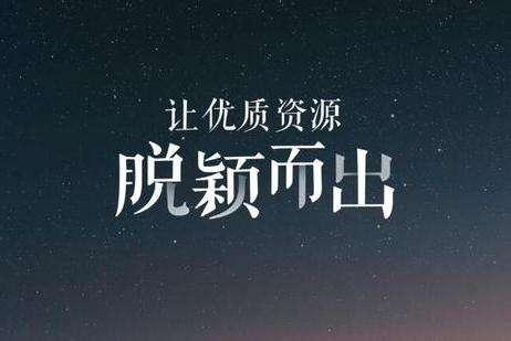 惠州SEO博客熊掌号培训教程